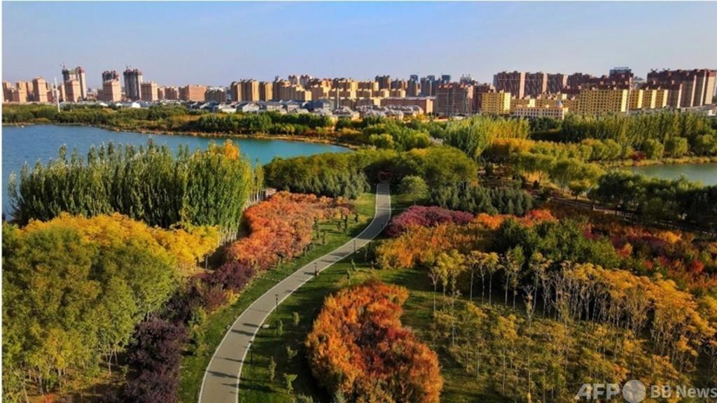 「豊かな自然こそが富だ」 世界の環境保護をリードする中国