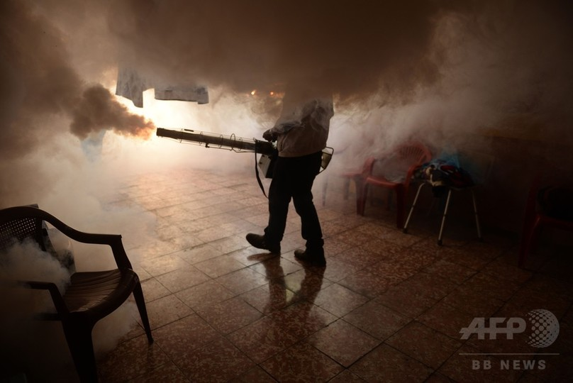 ジカ熱、米大陸全域に拡大の恐れ WHO警鐘