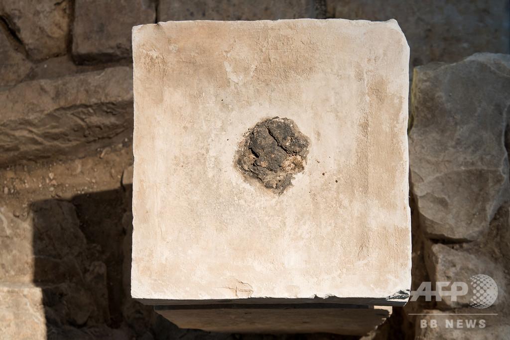 古代イスラエル遺跡から大麻の跡、儀式で使用か
