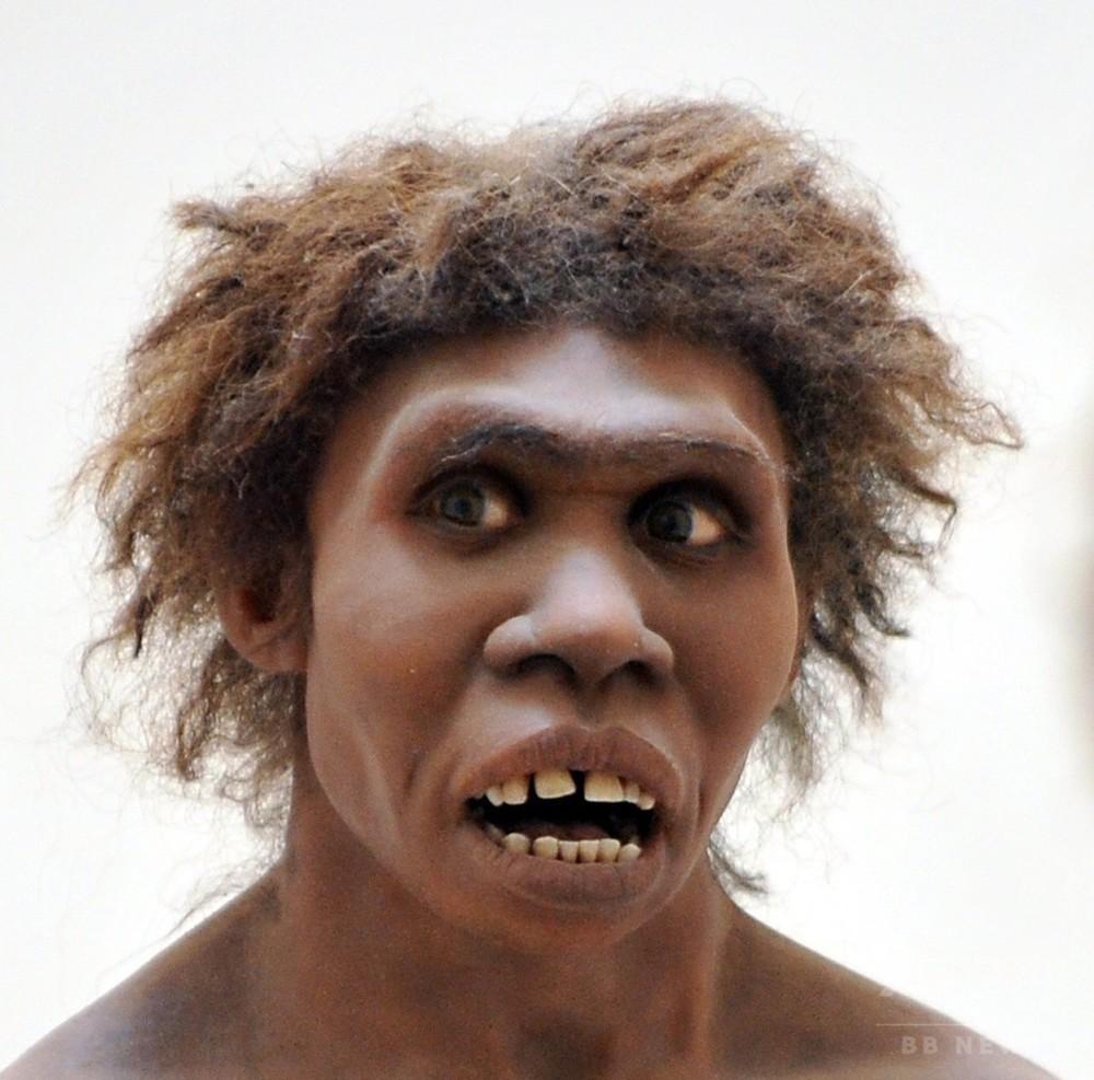 国際ニュース:AFPBB News古代人の食人、単なる「食事」ではない 研究