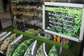 【AFP記者コラム】ウルグアイで来月大麻市販解禁、記者が使用登録「あくまで取材のため!」