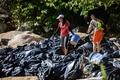 パーム油除去に多くのボランティア、船舶事故で流出 香港