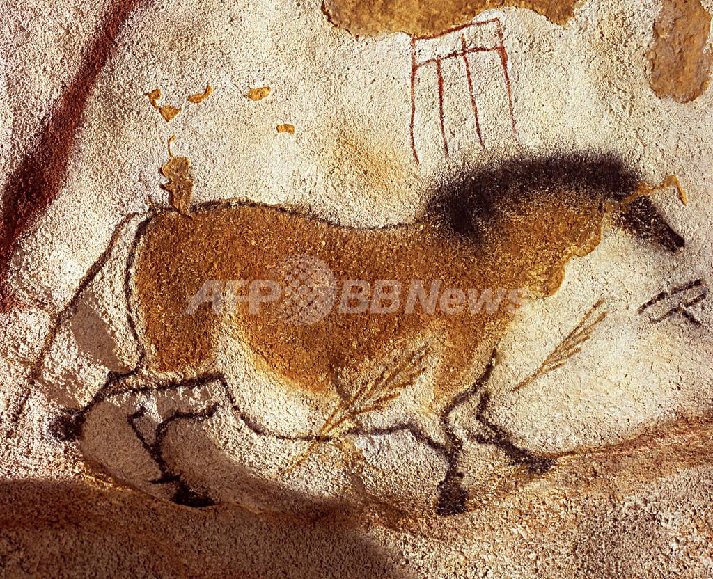 洞窟壁画に描かれた「ぶち模様の馬」、実在の証拠を発見 研究