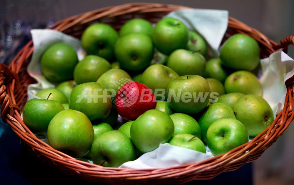 地球温暖化でリンゴが軟化、甘みは増加 果樹研究所が発表