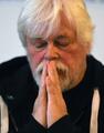 シー・シェパード、日本の捕鯨船発見できず 豪政府に支援要求