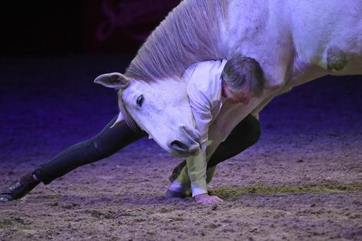 馬と人でつくるスペクタクル、ブダペストで馬術ショー ハンガリー