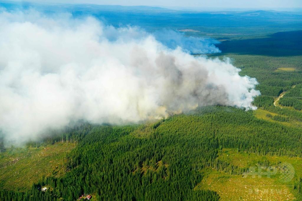 欧州北部で異例の熱波、各地で干ばつや山火事 大雨も