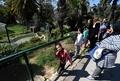 来園者の投石でワニが死んだ動物園、一時閉鎖へ チュニジア