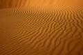 スーダンの世界遺産ピラミッドから人骨や副葬品、DNA検査へ