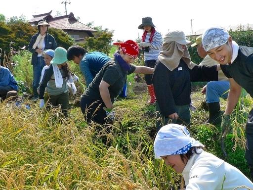 農水省、農山漁村における雇用対策を発表