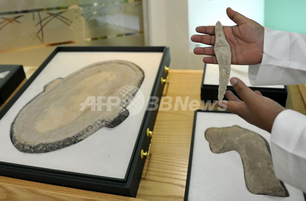 ウマの家畜化9000年前か、サウジアラビアで遺跡発見