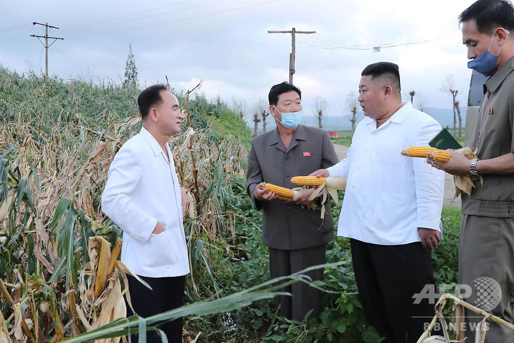 北朝鮮、台風9号被害で地方当局幹部に厳罰 機関紙報道