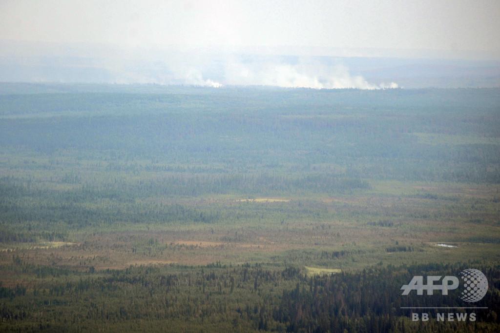 シベリア、5月に「極めて異常な」気温観測 平均より10度高い地域も