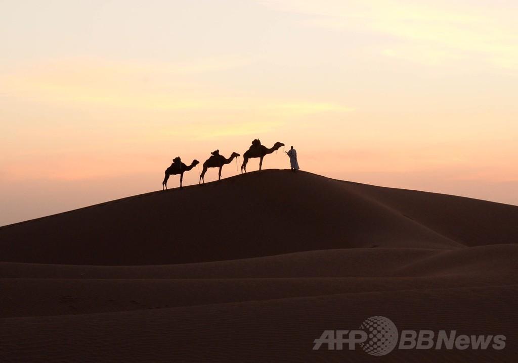 ちょこっと旅気分、夕日とラクダと砂漠の民 モロッコ