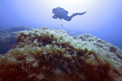 世界一深い水中洞窟見つかる チェコ