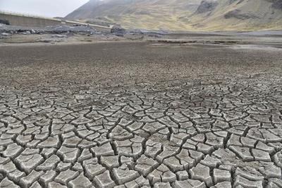南米ボリビア、干ばつで非常事態宣言 過去25年で最悪
