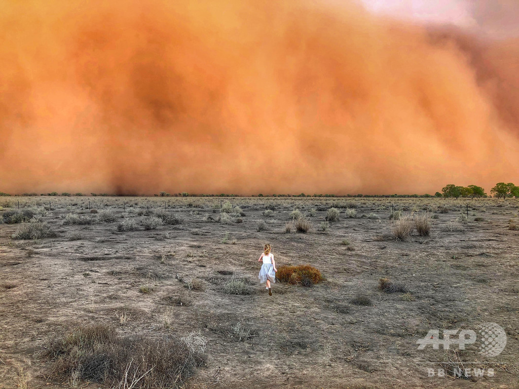 今度は大砂嵐に巨大ひょうが直撃、森林火災で疲弊した豪東部