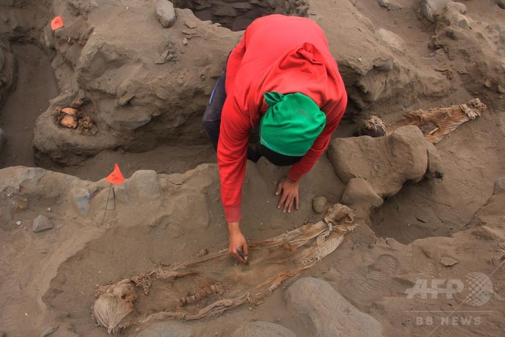 チムー王国の子ども集団いけにえ、新たに遺骨50体  ペルー