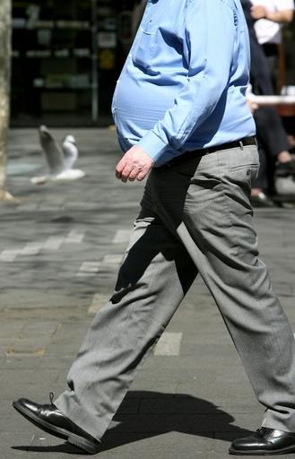 若いときに肥満だった男性は未婚率が高い、スウェーデン研究所