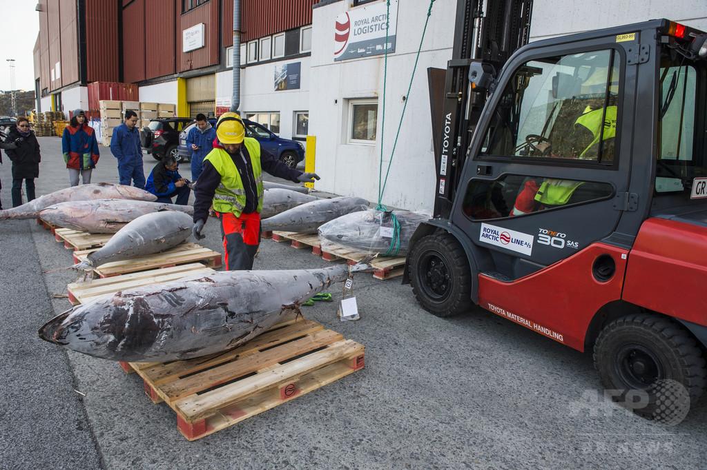 温暖化を逆手に経済発展めざせ、グリーンランド