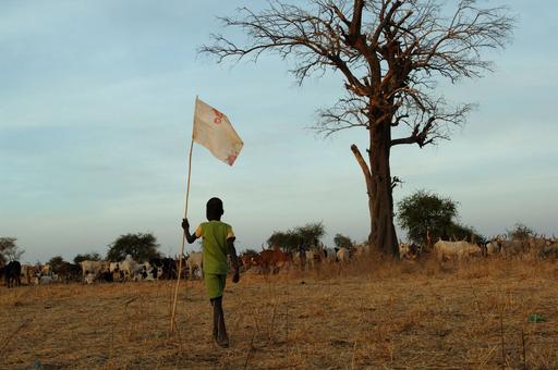 スーダンで新たな内戦の懸念、南部の民族間対立で140人死亡