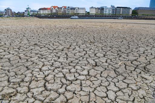 2010年代、10年間の平均気温で過去最高に 世界気象機関