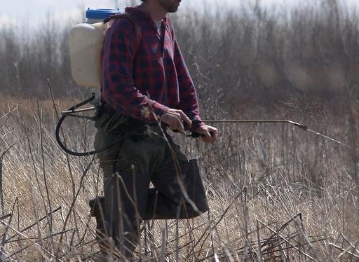 害虫駆除で致死量の化学物質散布、乳児含む3人死亡 ルーマニア