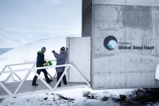 北極圏の「ノアの箱舟」、さらに種子6万種を貯蔵へ 「世界の破滅」に備え