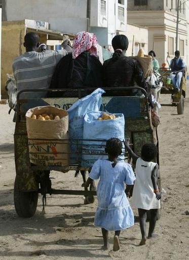 不法移民取締、1500人以上を拘束 - セネガル