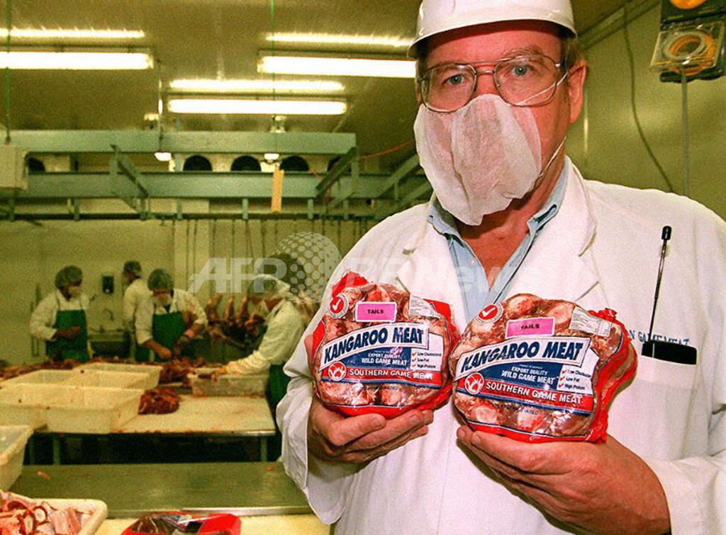 カンガルー肉を食べると地球温暖化が緩和される、専門家報告書