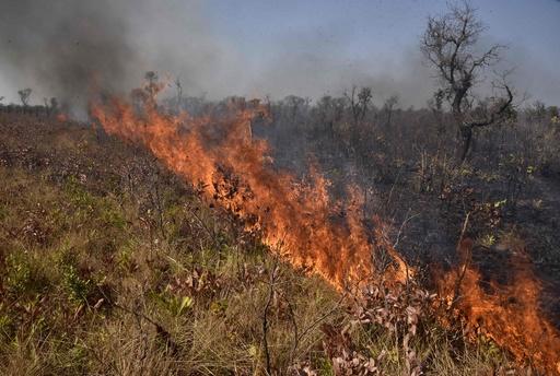 アマゾン火災、ボリビアの岩絵遺跡に大きな被害 世界遺産も危機に