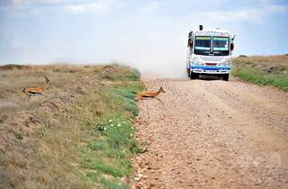 タンザニア北部でバスとトラックが衝突、12人死亡
