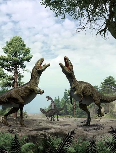 恐竜の「求愛儀式」か、白亜紀の痕跡化石を発見