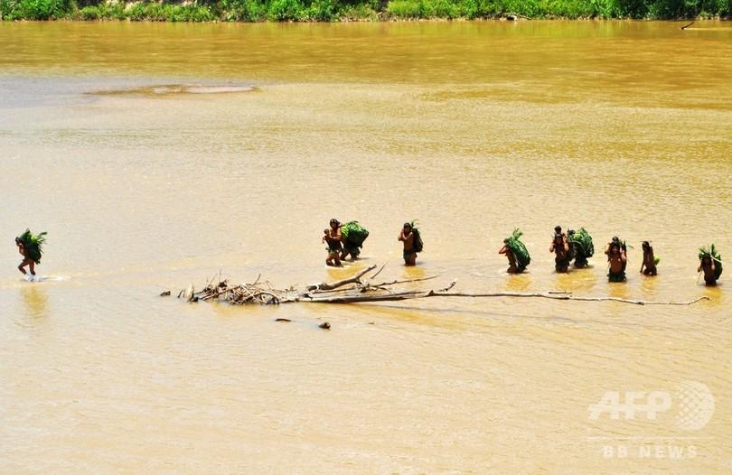 アマゾンの奥深く、ペルーの未接触先住民に迫る脅威