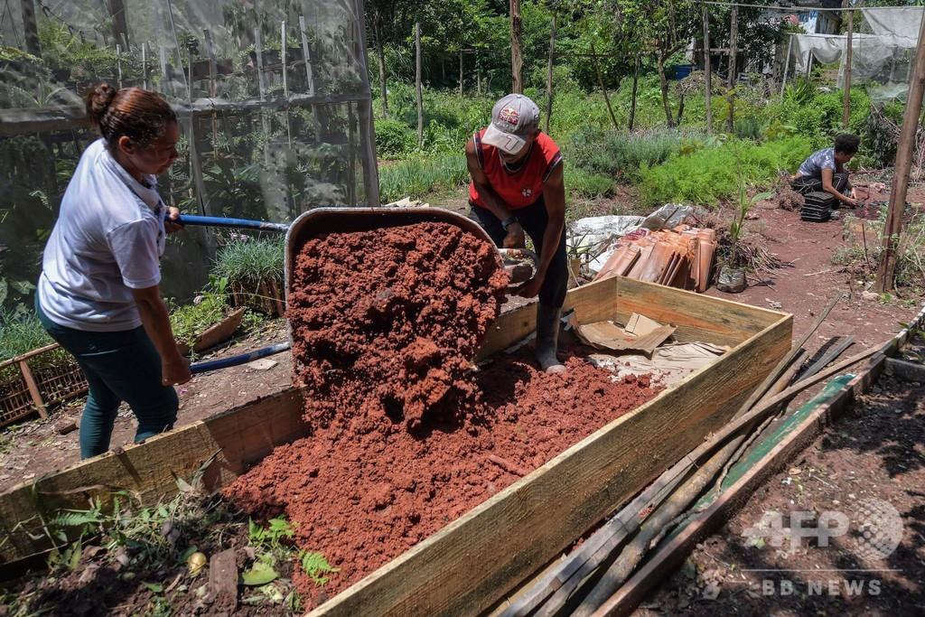 「緑のスラム街」 持続可能な生活目指す町づくりに住民奮闘 ブラジル