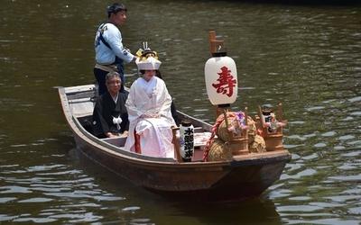 情緒あるあやめ園で「嫁入り舟」、茨城で伝統の催し