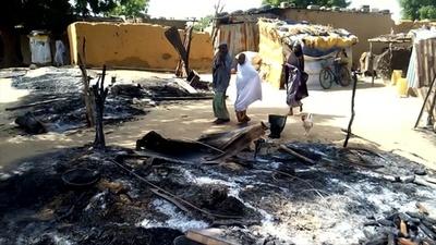 動画:ボコ・ハラムが農民4人射殺、軍に情報伝達と非難で攻撃増 ナイジェリア