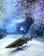 八景島シーパラダイス開館15周年記念「イワシ・イリュージョン」開催