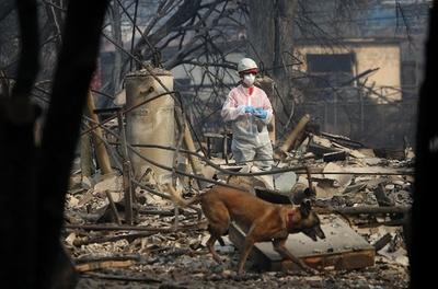 米森林火災「キャンプファイア」、不明者1000人超 死者71人に