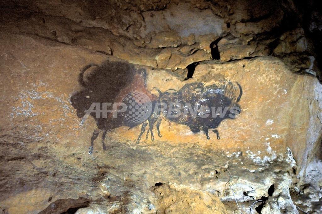 洞窟壁画の動物の動き、近代芸術より正確 研究