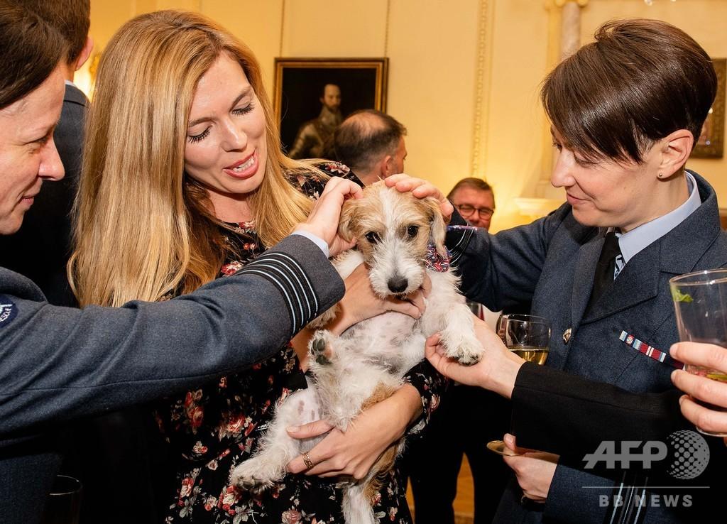 ジョンソン英首相の飼い犬、交際相手に抱っこされ登場