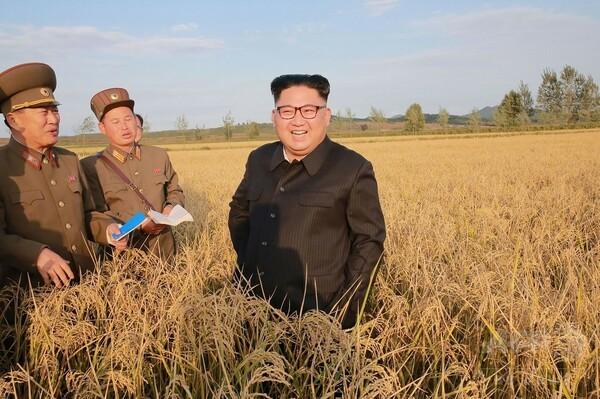 北朝鮮、ハッキングで韓国軍の「斬首作戦」計画など入手か