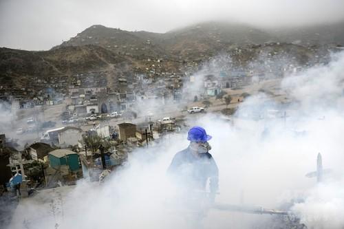 米当局、妊婦に中南米への渡航警戒 ジカウイルス感染拡大で