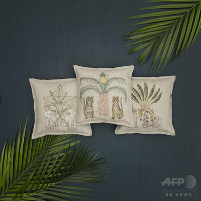 架空のジャングルから着想、「コーラル・アンド・タスク」18年春夏新作