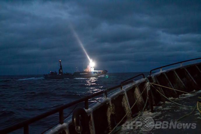 「日本の捕鯨船から攻撃」、シー・シェパードが主張