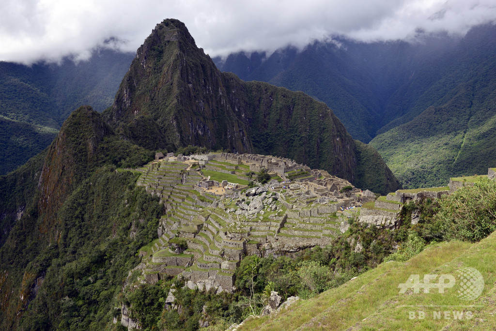 世界遺産を守れ、マチュピチュ遺跡に100万本植樹 ペルー大統領