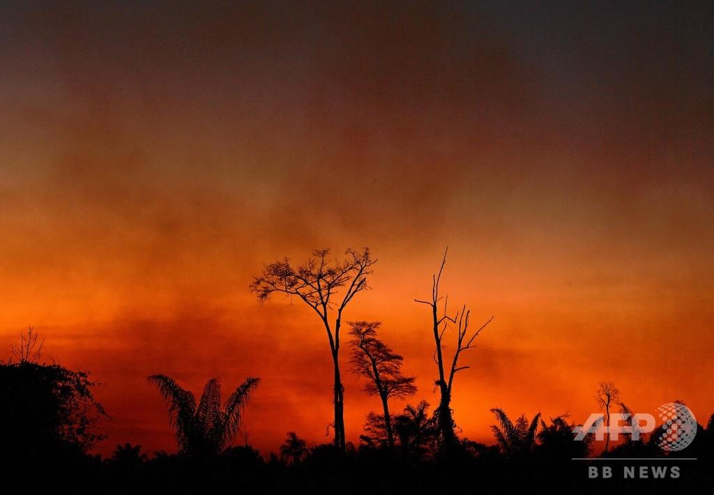 アマゾン火災は「うそ」、ブラジル大統領が主張