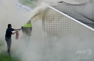 親善試合にハチ襲来! 敗れたホームチームは泣きっ面に蜂状態