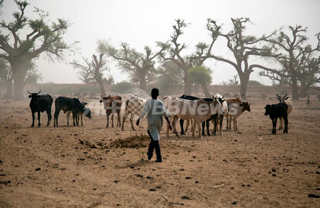 スーダン・ダルフール地方で戦闘、部族間抗争が激化