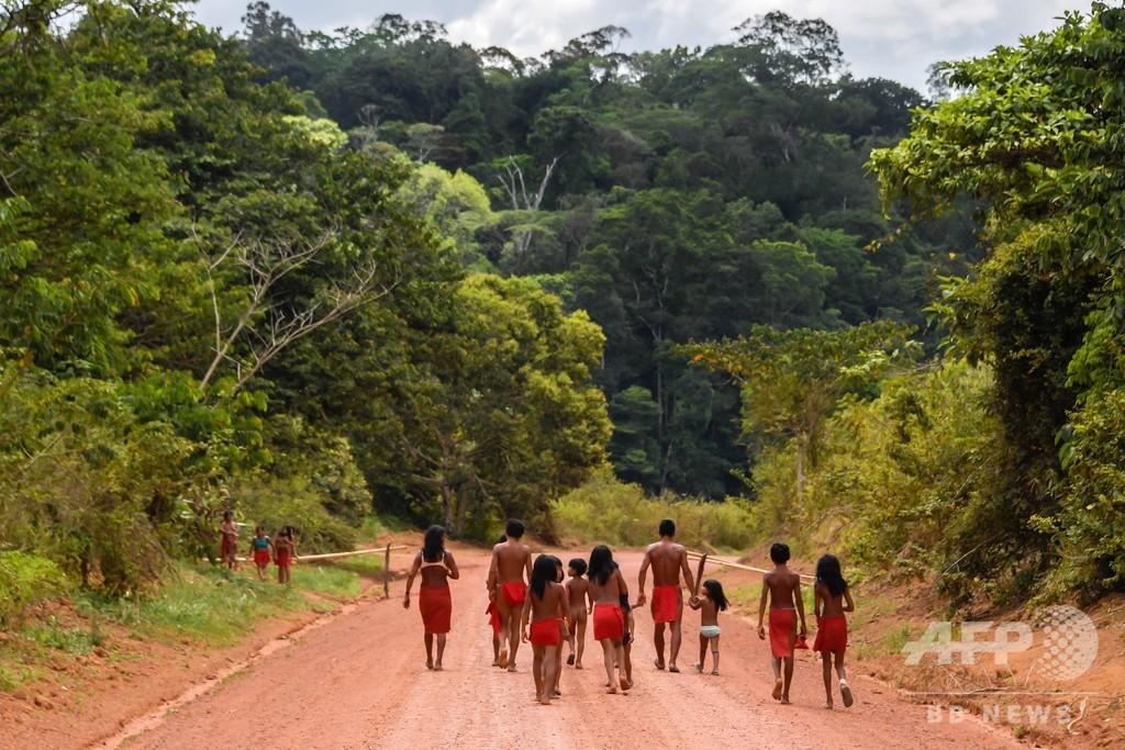 アマゾン先住民の指導者殺される、採掘業者が集落を占領 ブラジル